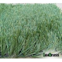 Quality Holland Impoted Thilon PE Soccer Artificial Grass For Sport for sale