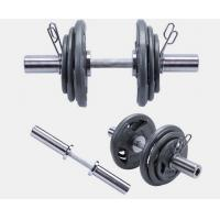 Wholesale dia 50mm body fitness handling Standard painted  weight Plates from china suppliers