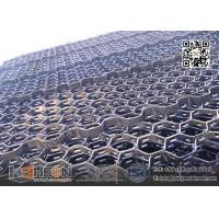 hexmetal with reinforced bar strip China Exporter