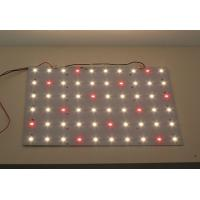 Wholesale PCBA Dimmable LED Module 5630 White and Red for Medical Lighting from china suppliers