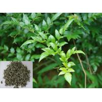 Wholesale Vine Tea Extract, Dihydromyricetin 98%, Ampelopsin, CAS No.: 27200-12-0, Qualified Chinese supplier from china suppliers