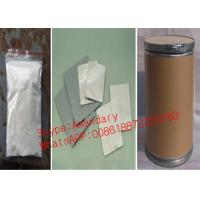 Wholesale Strongest Topical Anesthetic Powder Narcotics Analgesics Tetracaine HCl CAS 136-47-0 from china suppliers