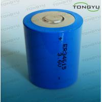 Wholesale ER34615 LiSOCL2 Lithium Thionyl Chloride Battery 3.6V 19000mAh for Car Electronics from china suppliers