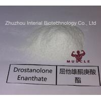 Wholesale Stronges Steroid Drostanolone Enanthate / Masteron Enanthate Powder For Cutting Cycles CAS 472-61-145 from china suppliers