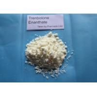 Wholesale Trenbolone Enanthate Muscle Building Steroids Light Yellow Powder Strength from china suppliers