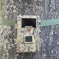 Wholesale infrared hunting camera that Camera trap for hunting from china suppliers