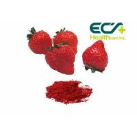 Wholesale Nutritional Organic Superfood Powder , Micronized Freeze Dried Strawberry Powder from china suppliers
