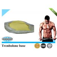 Wholesale 99% Trenbolone Steroid CAS 10161-33-8 Trenbolone Base for Muscle Building from china suppliers