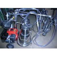 Wholesale Trolley type Gasoline Engine Portable Cow Milking Machine For Farm from china suppliers