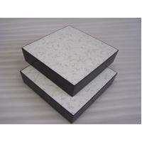 Wholesale Anti Static Calcium Sulphate Raised Access Flooring Systems FS800 from china suppliers