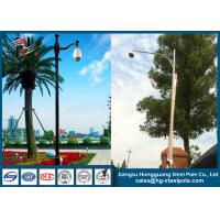 Wholesale Single Arm Polygonal Telescopic CCTV Camera Pole for Garden Monitoring ODM / OEM from china suppliers