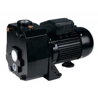 Wholesale DP Series Suction Up To 50M Deep Well Pumps For Underground Pumping 1.5HP from china suppliers