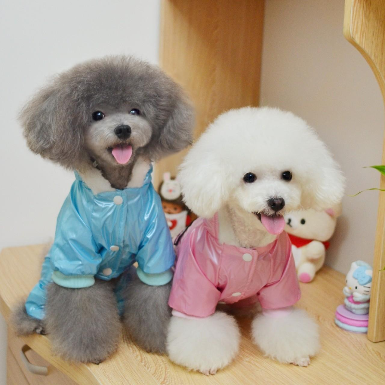 Wholesale High Quality Pink, Blue Windbreaker 100% Cotton Personalized Dog Clothes from china suppliers