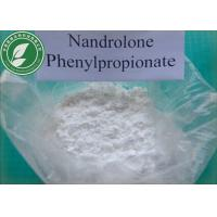 Wholesale CAS 62-90-8 Muscle Growth Steroid Powder Nandrolone Phenylpropionate For Bodybuilding from china suppliers