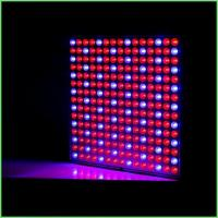 Quality IP54 Indoor LED Grow Lights / ABS Full Spectrum Plant Grow Lights 32 W For Greenhouse for sale