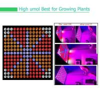 Wholesale Indoor Garden Full Spectrum LED Grow Lights For Reenhouses , 75W Wattage from china suppliers