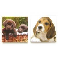 Wholesale Printed Dog Picture Fridge Magnet Make Your Own for Kids / Magnets For Refrigerator from china suppliers