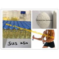 Wholesale Bulk Cycle Raw Steroids Powder Testosterone Sustanon Testosterone Enanthate For Muscle-Building from china suppliers