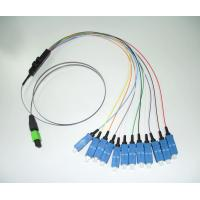Wholesale US CONEC MTP to SC,8/12/24cores Hydra patch cord/Cable Assemblies from china suppliers
