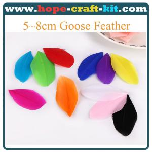 China Various size of goose feathers, turkey feathers, chicken feathers, peacock , ostrich feathers for hobbies and kids DIY on sale