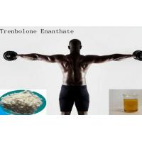 Wholesale High Purity Muscle Growth Pale Yellow Powder Trenbolone Enanthate / Parabola from china suppliers