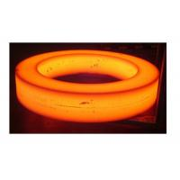 Forged Steel Components Carbon Steel Seamless Rolled Ring Forging Flange