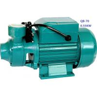 Wholesale Small Electric Domestic Water Pumps For Clean Water 0.75HP / 0.55KW from china suppliers