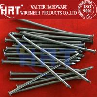 Wholesale Common nails with different sizes (Factory Low Price) from china suppliers