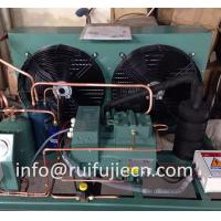 Wholesale Unit - Spb09kl  Bitzer Air Cooled Condenser Unit for Model 4Tes-9y from china suppliers