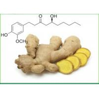Quality Ginger Root Extract Powder , Ginger Powder For Skin Care Hair Conditioner And Shampoo hair grower for sale