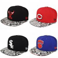 Wholesale 2013 Fahion custom snapback cap/flat brim cap/sports cap from china suppliers