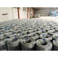 Wholesale Hot Dipped Galvanized Field Wire Fence , 1.6 Mm - 3.5 Mm Cattle Wire Fence For Horse from china suppliers