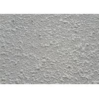 Wholesale Soft Color Interior Wall Stucco / Wall Coating Paint For Home Decor , Cement Based from china suppliers