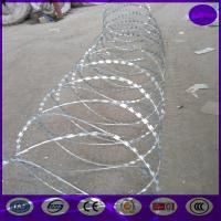 Wholesale 700mm coil ,6kg/roll Hot Dipped Galvanized Razor barbed wire from china suppliers
