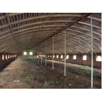 Wholesale Reusable Qualified Safety And Utility Fabricated Steel Chicken Shed Systems from china suppliers