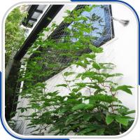 Wholesale architectural 316L stainless steel rope mesh plant trellis from china suppliers
