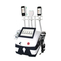 Wholesale 360 Degree Slimming Liposuction Cryolipolysis Fat Freezing Machine from china suppliers