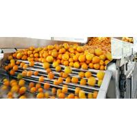 Wholesale Engery Saving Orange Juice Production Industrial Orange Juice Machine ISO CE from china suppliers
