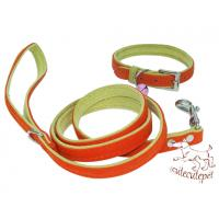 Wholesale nylon dog leash with collar set, big discount from china suppliers