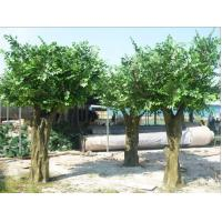 Buy cheap outdoor park/resturant landsaping artificial banyan tree from wholesalers