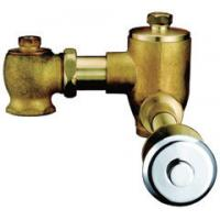 Wholesale Home CE Brass Toilet Flush Valves , Self Closing Conceal Installation Flushers from china suppliers