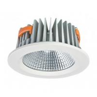 Wholesale Cold White COB Led Commercial Ceiling Down Light For Jewelry Shop from china suppliers