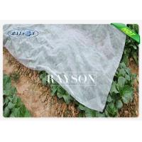 Wholesale Whole Area Covering Max Width 46m Piece / Roll Frost Protection Non woven Fleece For Crop from china suppliers