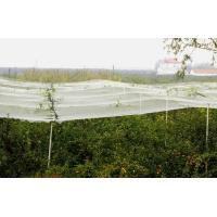 Buy cheap Warp Knitted Anti Hail Net from wholesalers