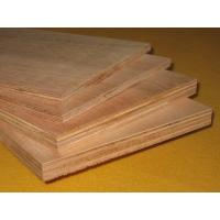 Wholesale Okoume face and Back, Full Eucalyptus core, Size: 1220X2440X5MM-25MM. from china suppliers