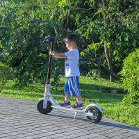 Buy cheap EcoRider 2 Wheels Self Balancing Scooters 500W 8.5 Inch 36V Xiaomi Scooter from wholesalers