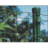 Wholesale Standard Patterns PVC Coated  electro galvanized Fencing Wire Mesh In Rolls from china suppliers
