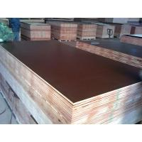 Wholesale E2 poplar, combi Melamine coated construction formwork plywood brown film / films from china suppliers