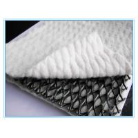 Wholesale HDPE Plastic Geogrid Net with two sides geotextile,HDPE Plastic Geogrid Net with two sides geotextile from china suppliers