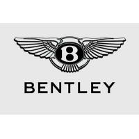 Wholesale TEPO-AUTO Of Autobase formally joins in Bentley 、Rolls-Royce from china suppliers